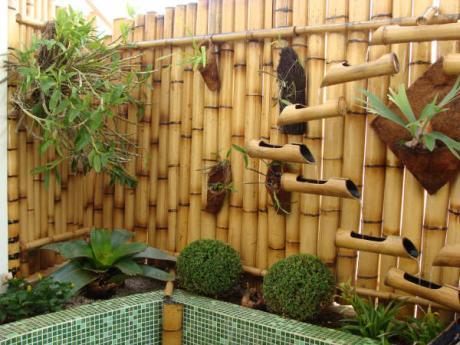 Paisagismo e bambu dupla perfeita bambu zh - Canas de bambu decoracion exterior ...